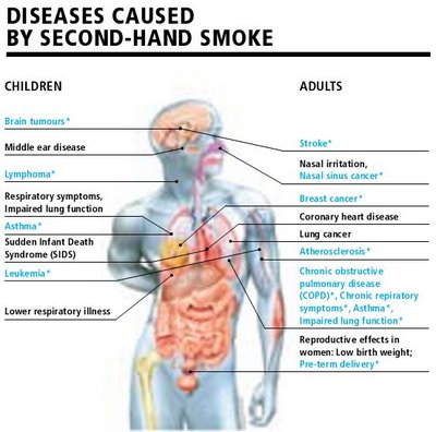 passive smoking and cancer essay Passive smoking essays: over 180,000 passive smoking essays, passive smoking term papers, passive smoking research paper, book reports 184 990 essays, term and research papers available for unlimited access.